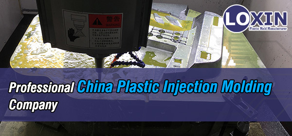 Professional-China-Plastic-Injection-Molding-Company-LOXIN-Mold