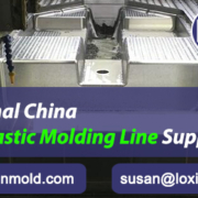 Professional-China-Output-Plastic-Molding-Line-Supplying-LOXIN-Mold